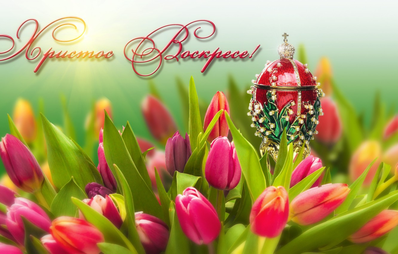 Photo wallpaper flowers, holiday, egg, Easter, tulips