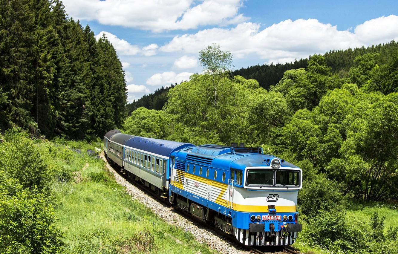Photo wallpaper forest, the sky, trees, the way, cars, railroad, locomotive, Locomotive, Railroads