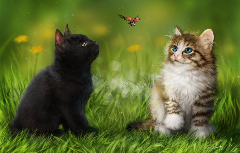 Photo wallpaper animals, grass, ladybug, kittens