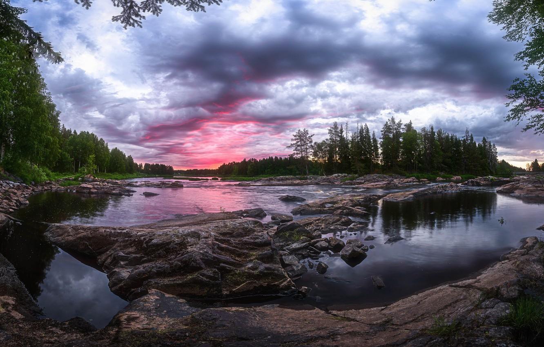 Photo wallpaper forest, summer, river, Finland