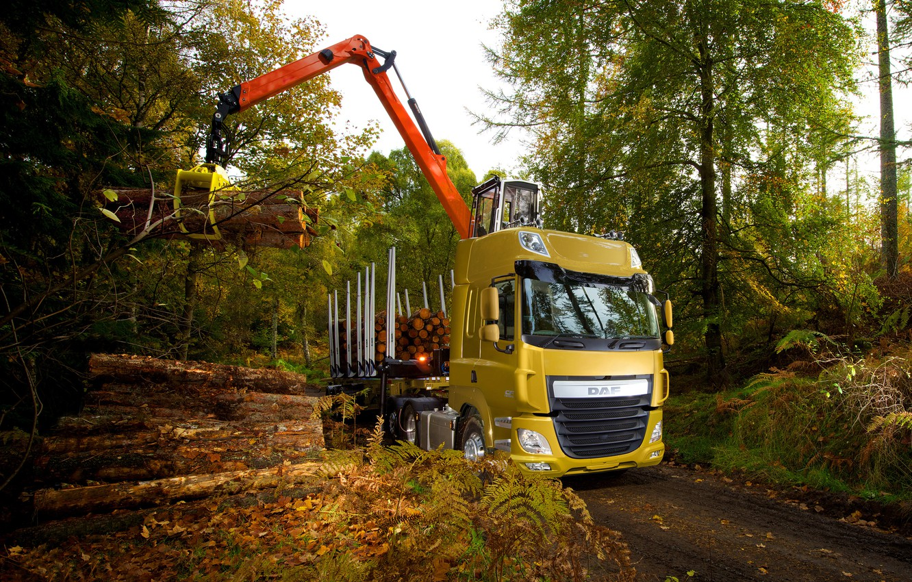 Photo wallpaper autumn, forest, trees, yellow, foliage, the truck, download, DAF, tractor, DAF, 2016, the trailer, crane, …