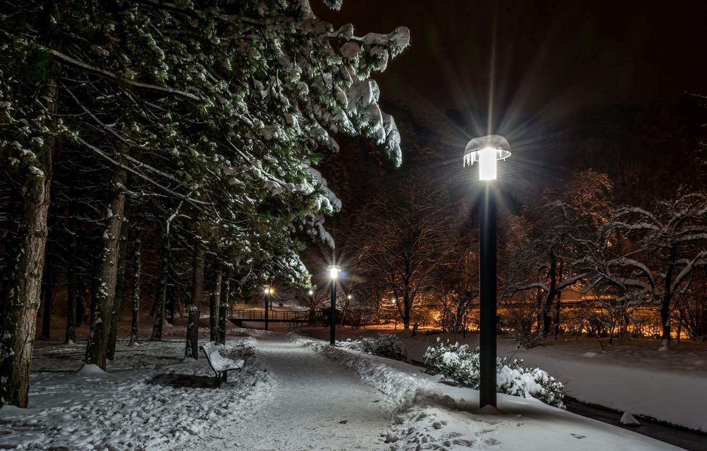 Photo wallpaper winter, snow, trees, bench, night, lights, Park, lights, alley, Croatia, Samobor