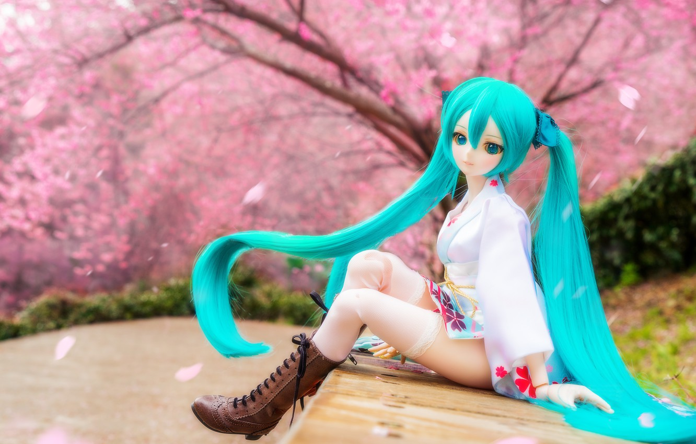Photo wallpaper hair, doll, shoes, Sakura