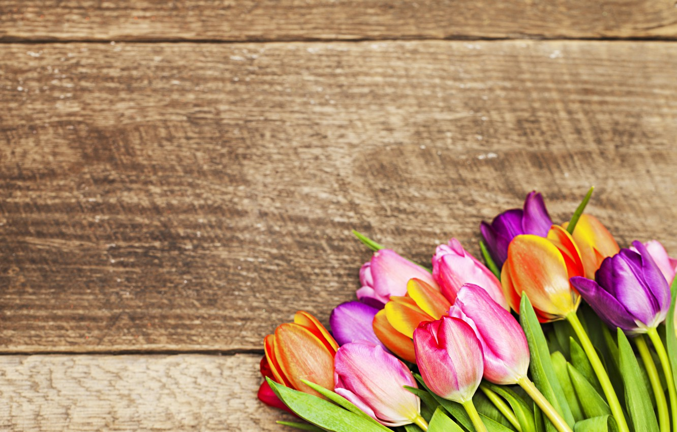 Photo wallpaper flowers, bouquet, colorful, tulips, love, wood, romantic, tulips, gift