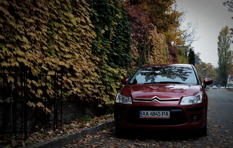 Photo wallpaper machine, autumn, leaves, Citroen, Citroen, Car, car, France, Citroen C4