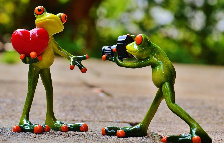 Photo wallpaper Photo, Frog, Model, heart, Lady, Posing, Photographer