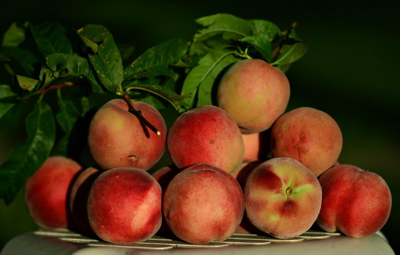 Photo wallpaper harvest, fruit, peaches