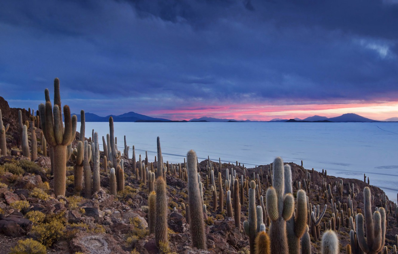 Photo wallpaper clouds, mountains, lake, cactus, Bolivia
