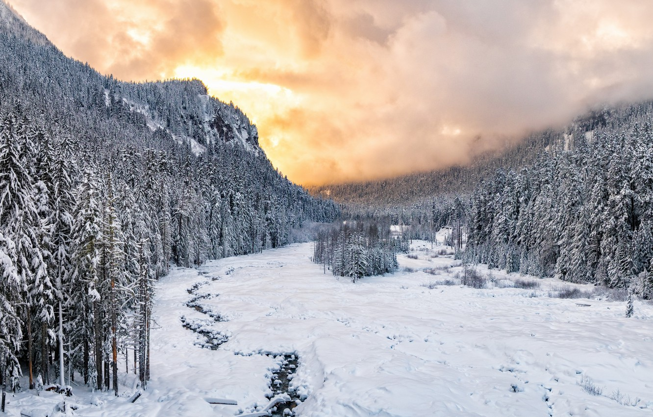Photo wallpaper Sunset, winter, snow, national park, Nisqually River valley, Mount Rainie