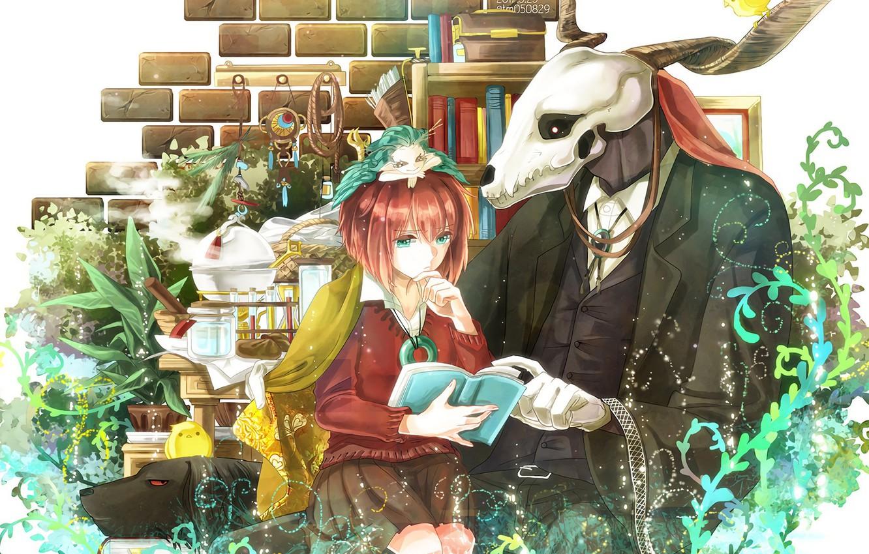 Photo wallpaper Anime, Manga, Shonen, Maho Group no Yome, Elias Ainsworth, The Ancient Magus Bride, Chise Hatori