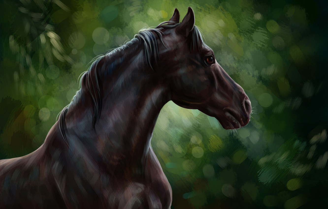 Photo wallpaper horse, oil, art, watercolor, pencil, painting, horse, horse, gouache, wallpaper., painting painting, forest nature, black …