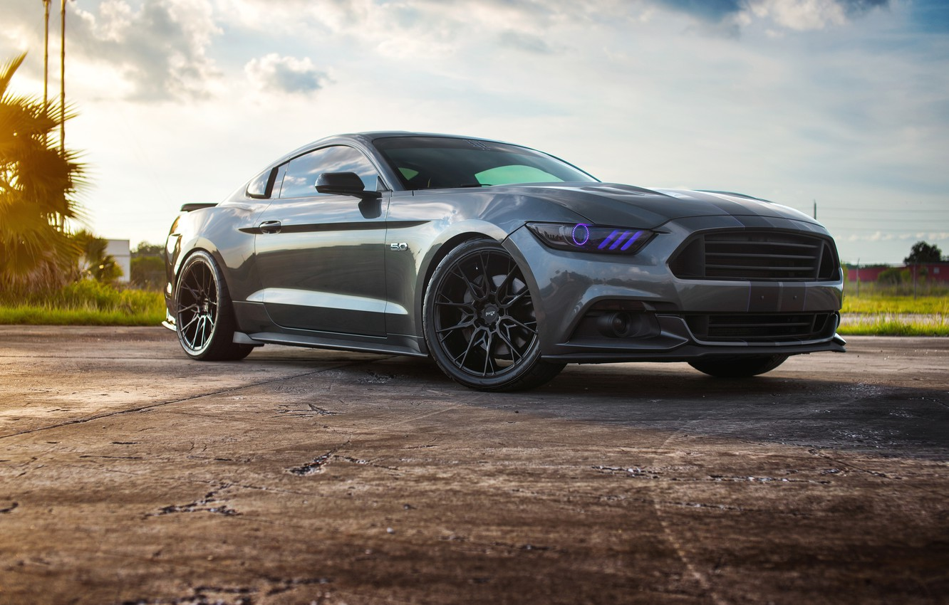 Photo wallpaper Mustang, Ford, 5.0, Wheels, Niche