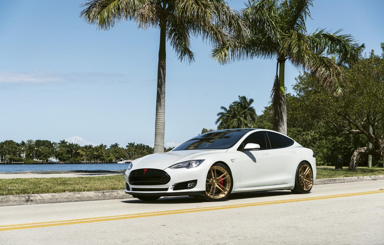 Photo wallpaper Tesla, model, Wheels, Niche