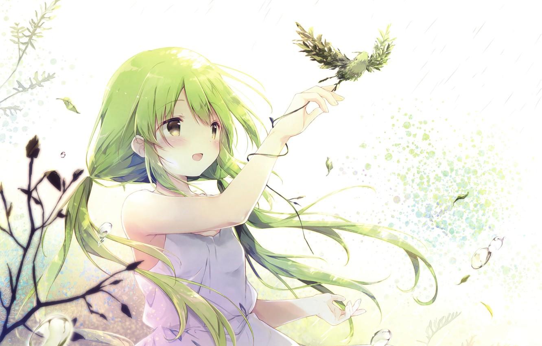 Wallpaper Bird Girl Anime Green Hair Images For Desktop Section Art Download