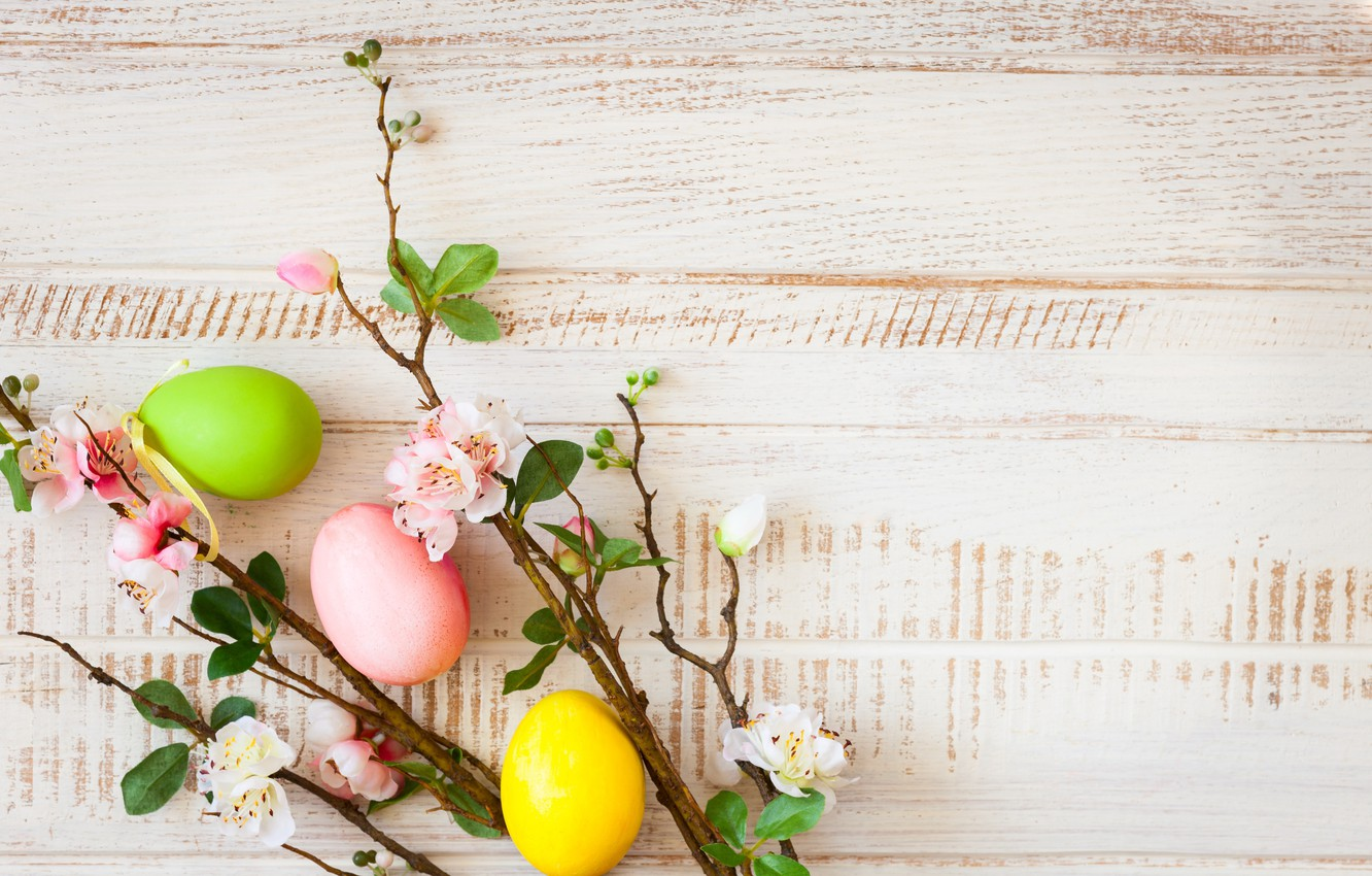 Photo wallpaper flowers, branches, apple, spring, Easter, wood, blossom, flowers, spring, Easter, eggs, decoration, Happy, the painted …