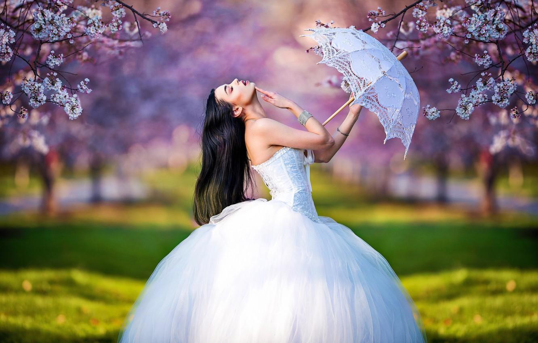Photo wallpaper girl, trees, branches, pose, umbrella, mood, spring, garden, the bride, flowering, wedding dress