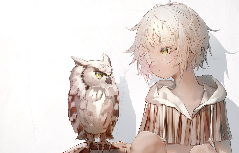 Photo wallpaper wall, owl, girl