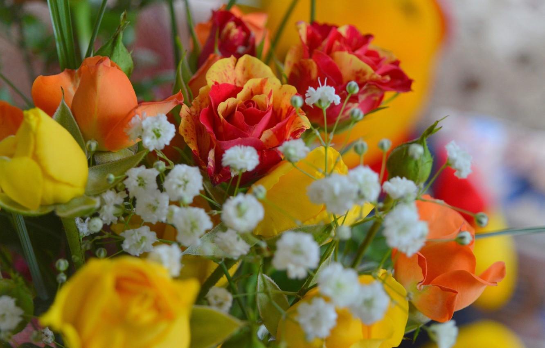 Photo wallpaper Flowers, Bouquet, Roses, Flowers, Roses, Bouquet, gypsophila