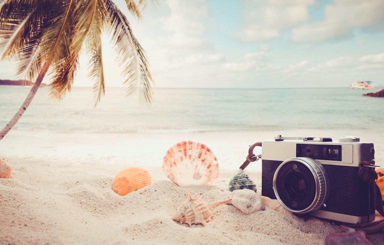 Photo wallpaper Sand, Sea, Beach, Palma, The camera, Shell