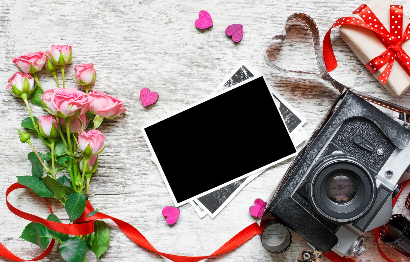 Photo wallpaper flowers, photo, roses, bouquet, camera, frame, gifts, hearts, love, vintage, photo, wood, pink, camera, romantic, …