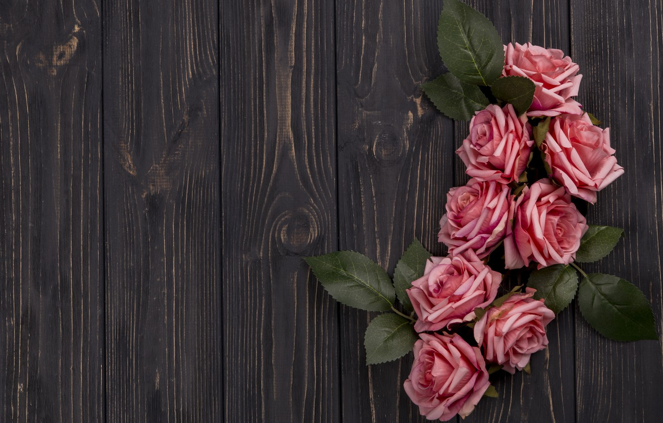Photo wallpaper leaves, flowers, branches, Roses