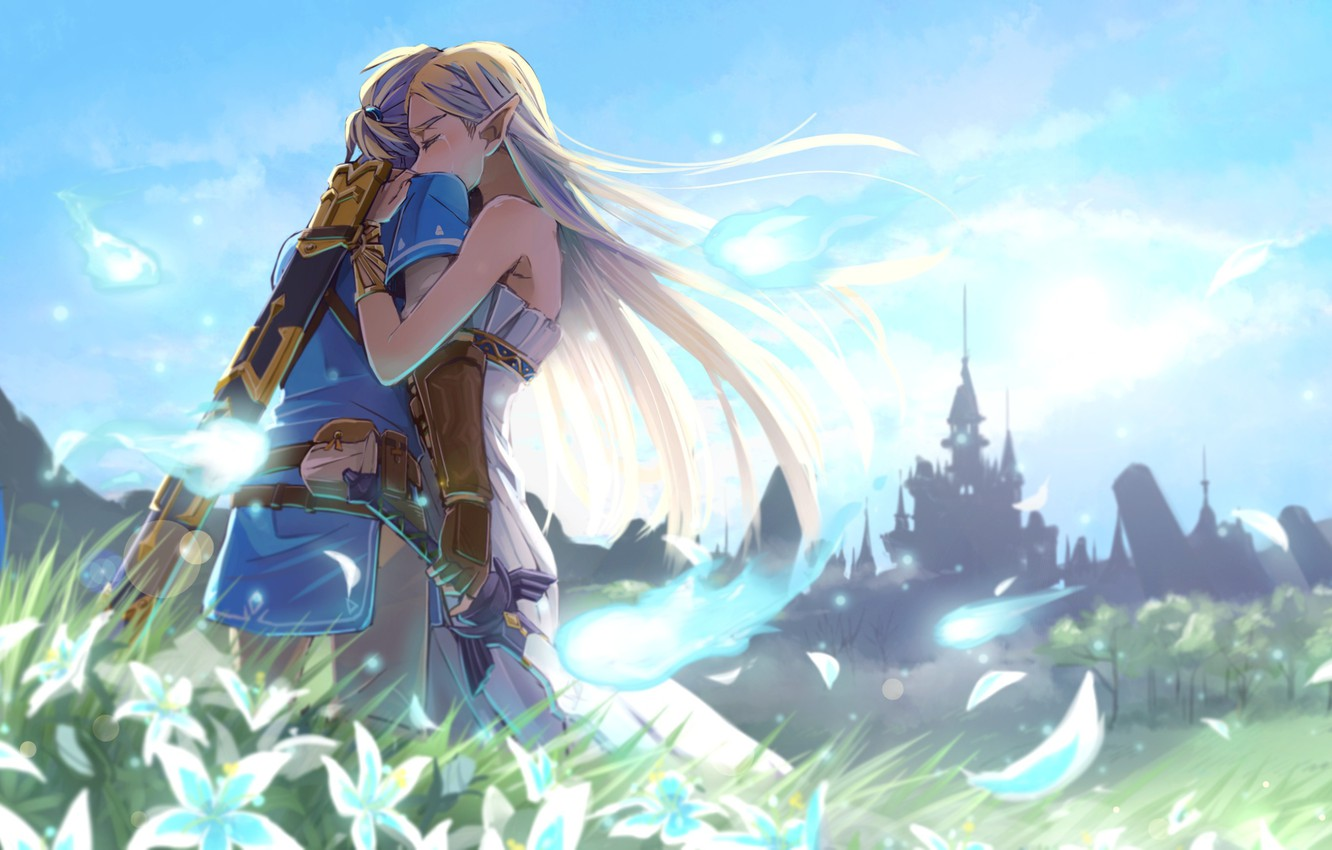 Wallpaper Sword Game Ken Blade Vegetation Zelda The Legend