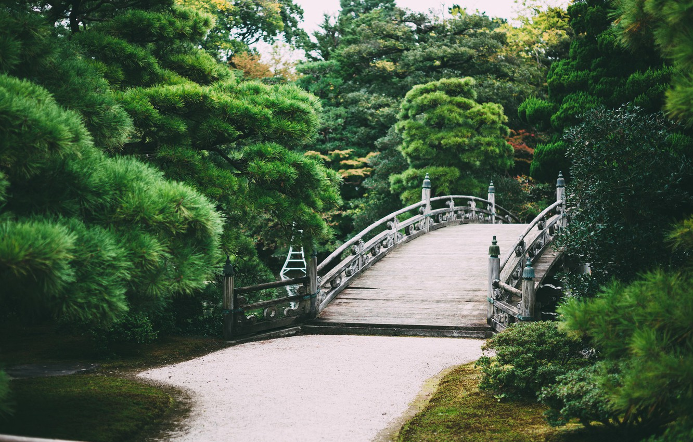 Photo wallpaper trees, bridge, Park, garden