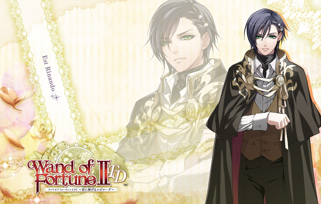 Photo wallpaper the game, anime, art, guy, Wand Of Fortune, Novella