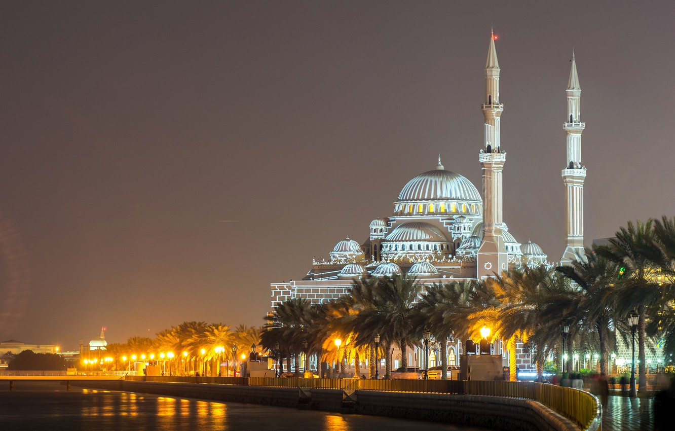 Wallpaper night, lights, river, palm trees, lights, temple, mosque
