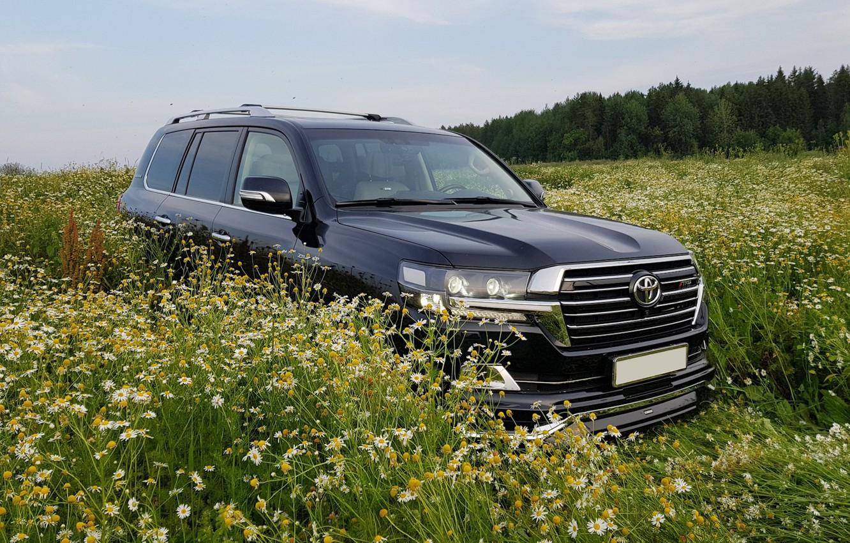 Photo wallpaper field, chamomile, Toyota LC 200
