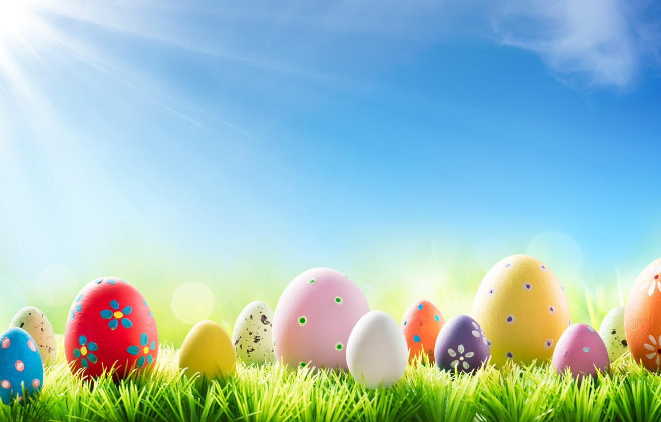 Photo wallpaper grass, the sun, flowers, spring, Easter, flowers, spring, Easter, eggs, decoration, Happy, the painted eggs