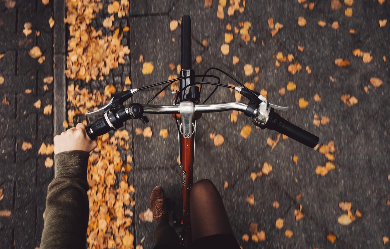 Photo wallpaper autumn, girl, bike, pavers, Rona Keller