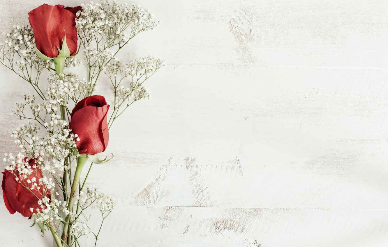 Photo wallpaper background, buds, twigs, Red roses