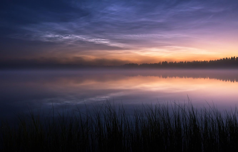 Photo wallpaper nature, fog, lake, the evening
