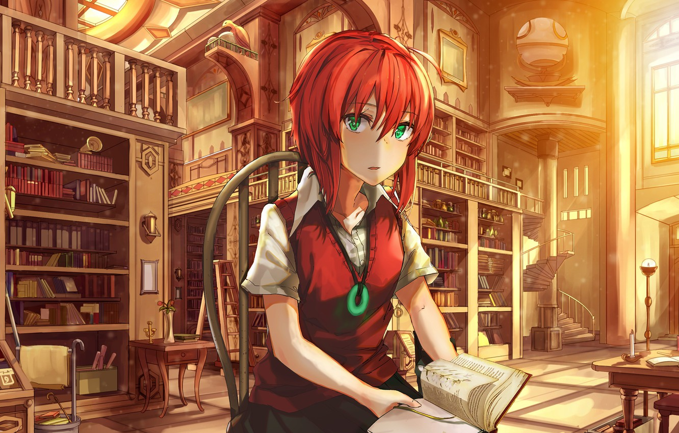 Photo wallpaper girl, anime, art, bride of the sorcerer, The Ancient Magus' Bride
