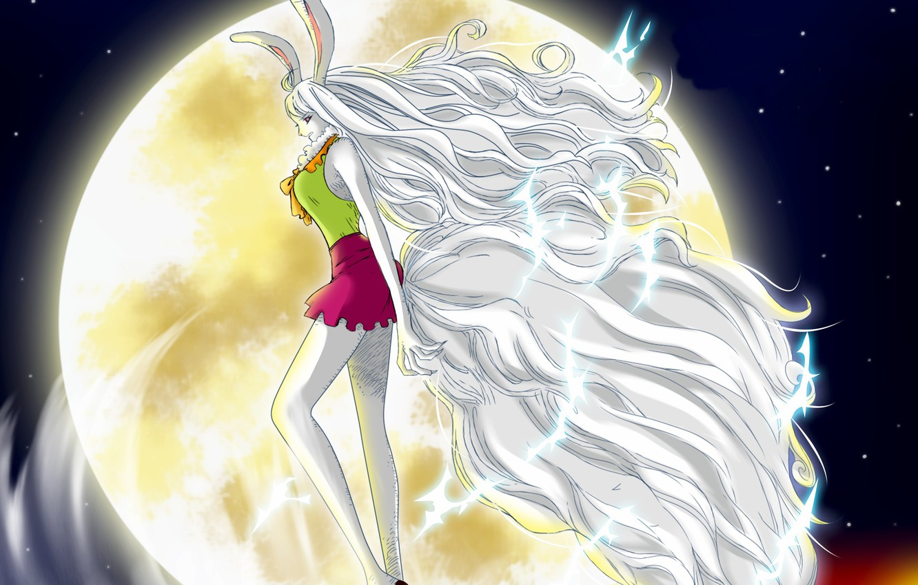 Wallpaper Kawaii Game One Piece Long Hair Rabbit Anime Lion