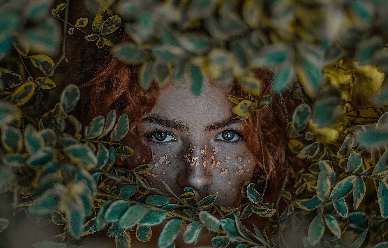 Photo wallpaper eyes, look, leaves, girl, face, red, redhead