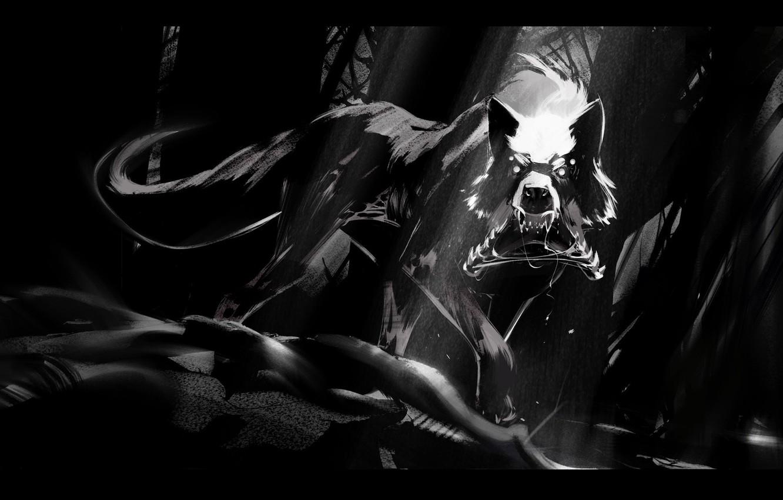 Photo wallpaper wolf, black and white, fanetti