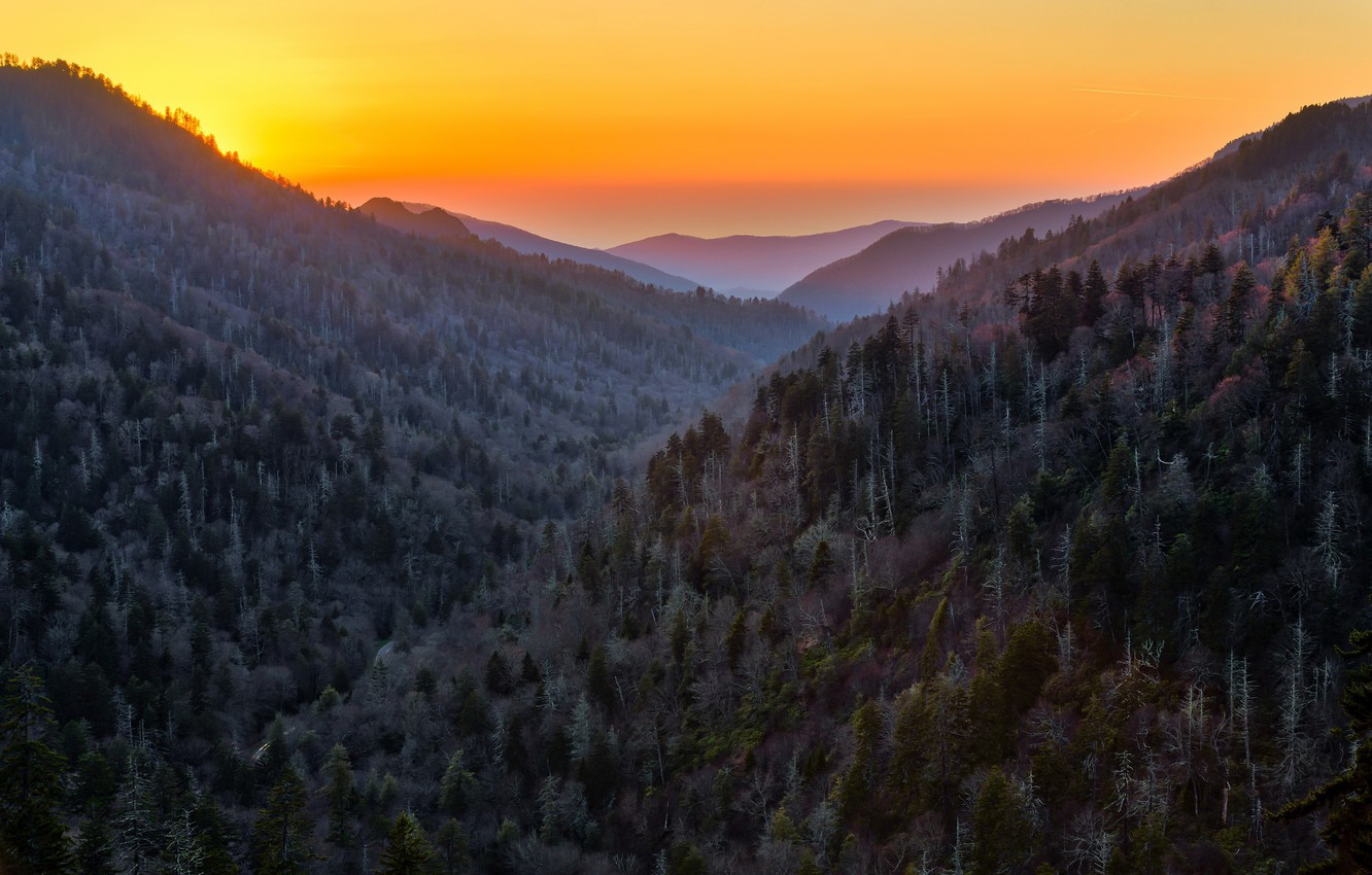 Wallpaper Forest Sunset Mountains Nature United States Tennessee Sevier Images For Desktop Section Pejzazhi Download
