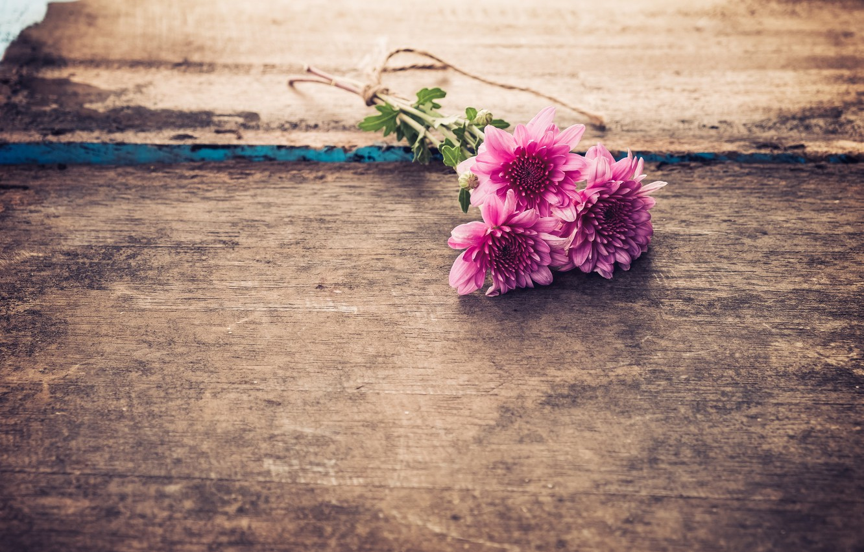 Photo wallpaper flowers, bouquet, Chrysanthemum