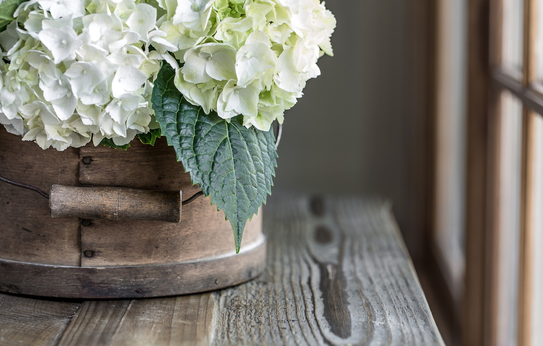 Photo wallpaper table, bucket, hydrangea