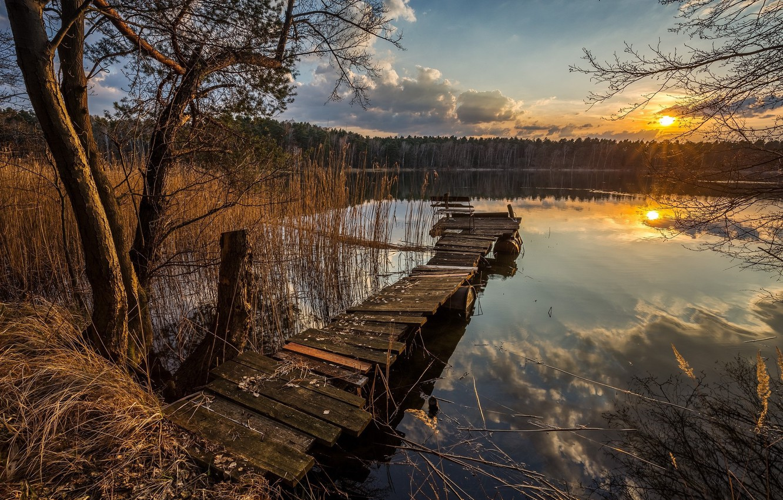 Photo wallpaper lake, morning, the bridge