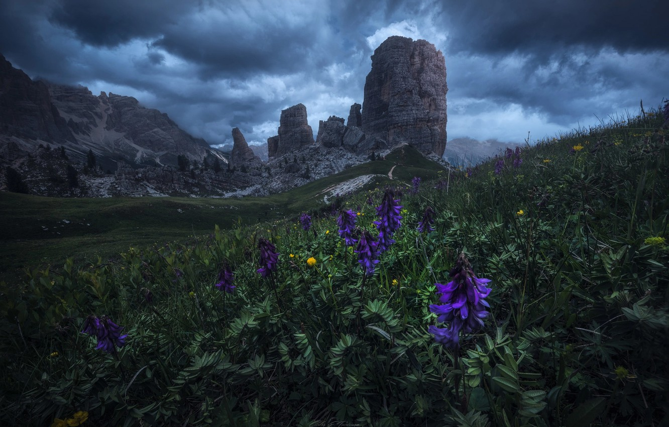 Photo wallpaper the sky, clouds, flowers, mountains, clouds, nature, rocks