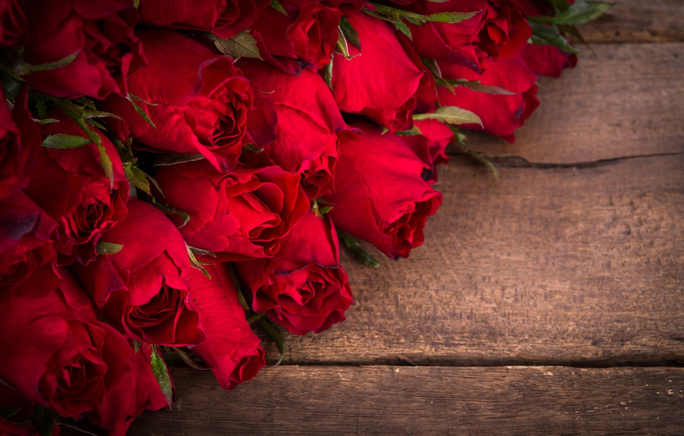Photo wallpaper flowers, roses, bouquet, buds, red roses