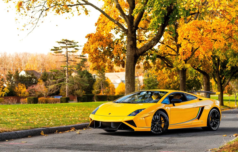 Photo wallpaper autumn, Lamborghini, supercar, Gallardo, yellow, Lamborghini, Gallardo