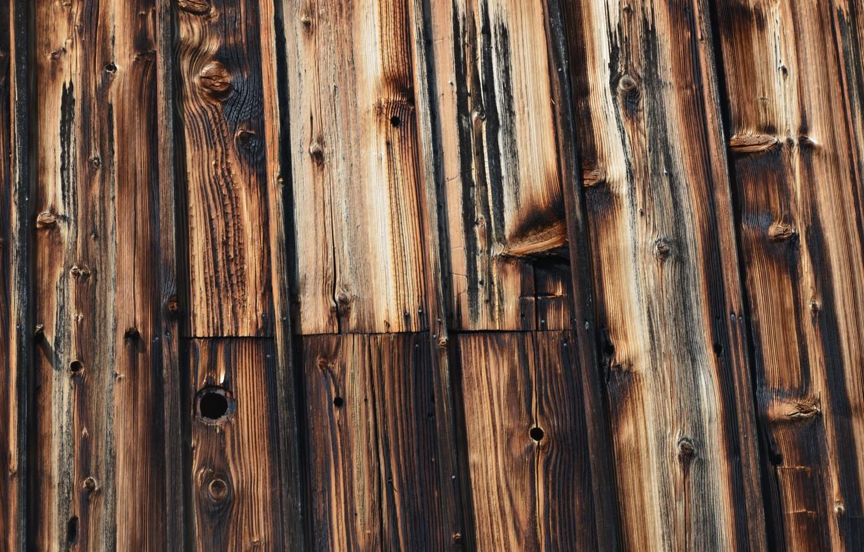 Photo wallpaper black, wood, brown, pattern
