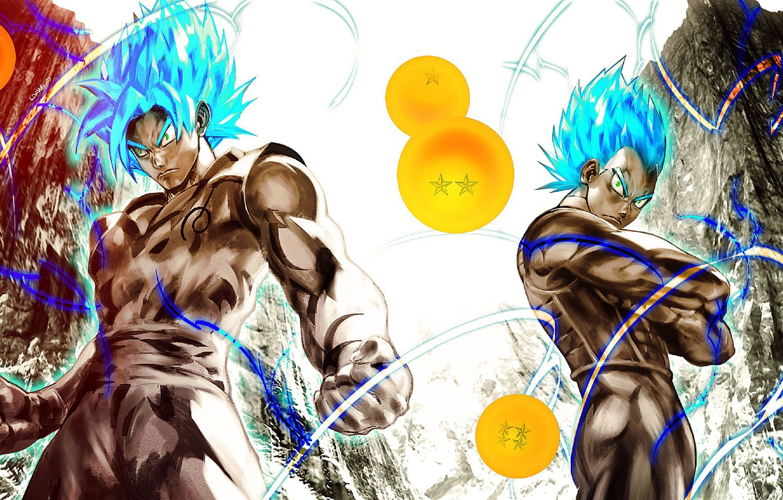 Wallpaper Game Anime Manga Japanese Son Goku Vegeta