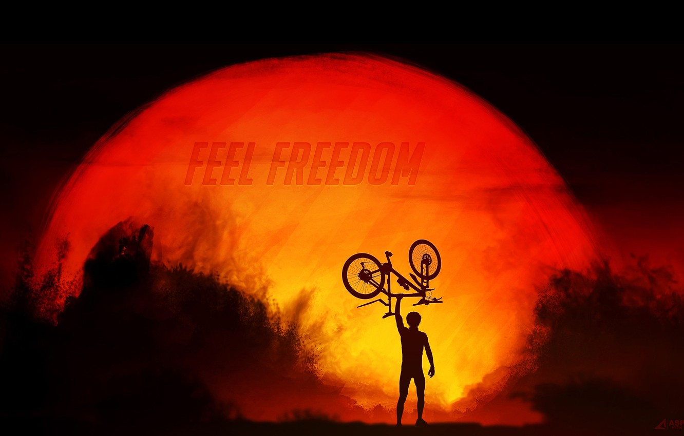 Photo wallpaper freedom, the sun, sunset, bike, sport, silhouette, cyclist, sport, bike, bicycle, bike, sunset, freedom, cycle, …