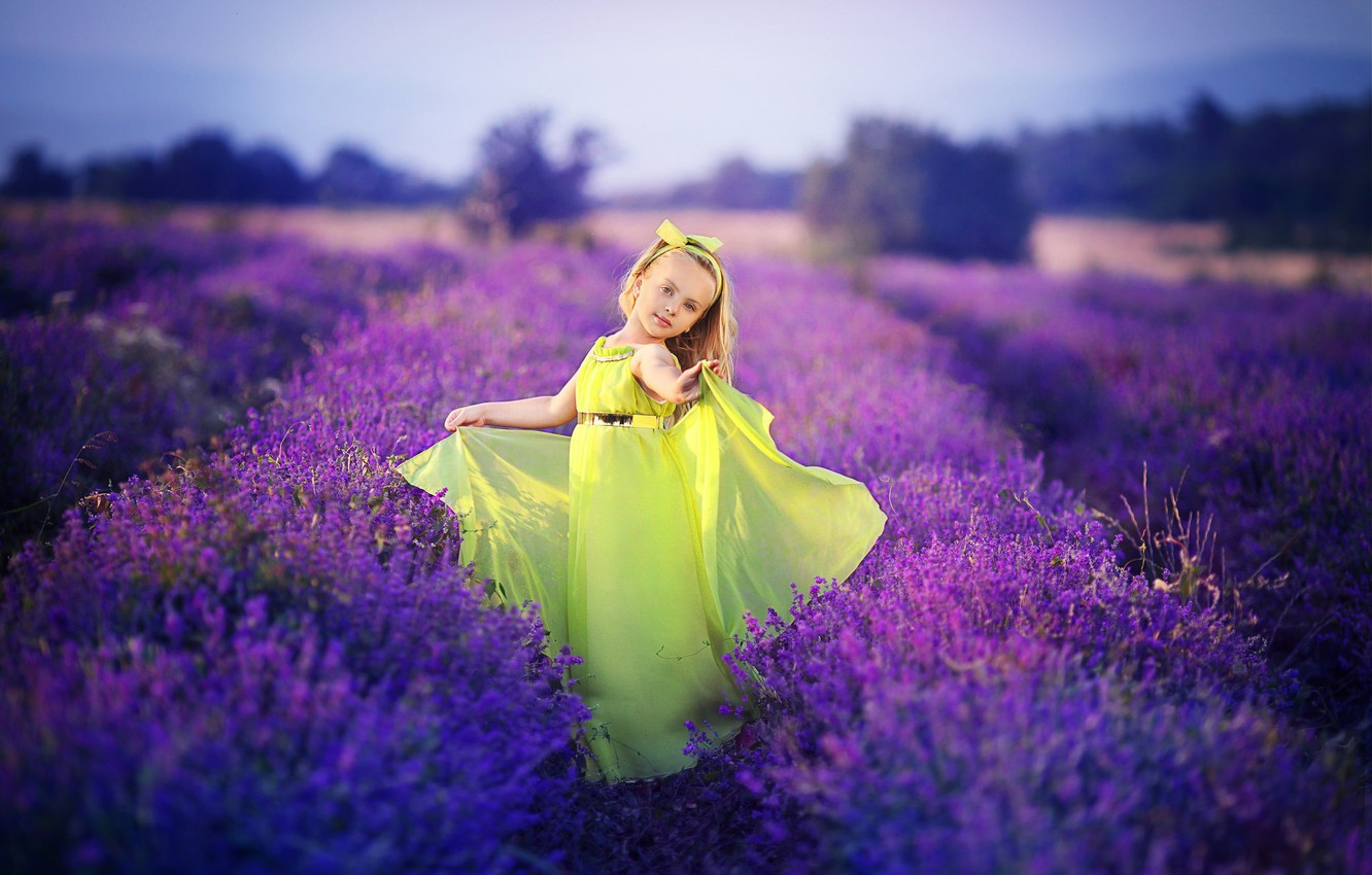Photo wallpaper flowers, nature, girl, lavender field