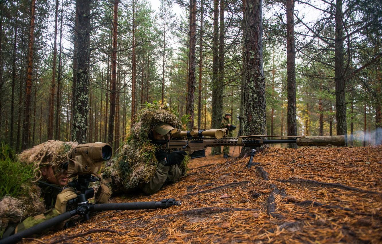 Photo wallpaper forest, optics, sniper, rifle, observation
